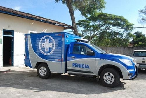 Belmonte: Criança de um ano morre atingida por galho de árvore