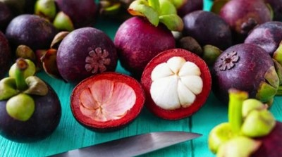 Cientistas baianos fazem testes com casca de mangostão para tratar diabetes