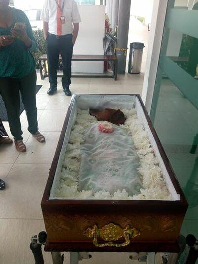 Inusitado: Cachorro é velado dentro de um caixão em Ilhéus