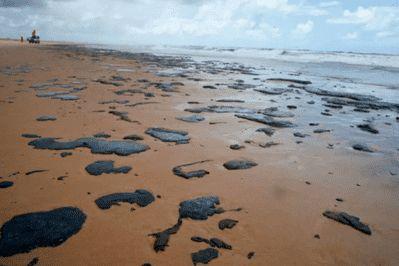 Canavieiras em alerta: Vídeo-ICMBio terá Plano de Ação contra manchas de óleo nas praias