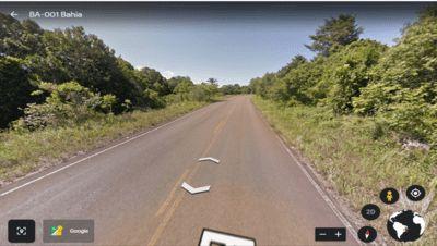 Atenção motorista: Árvore caída na BA-001 rodovia Una/Ilhéus
