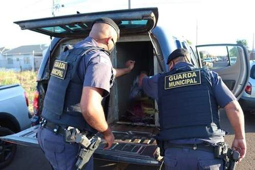 Sarandi: Guarda Municipal apreende 215 kg de maconha; traficante é preso